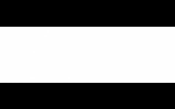 BLACK&WHITE Білий 25x80