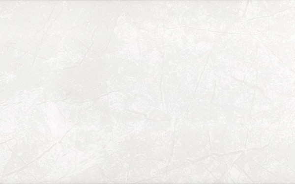 PALMIRA  сіра світла/ 23x60 195 071